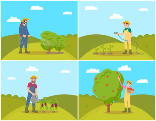 Farmer Woman Harvesting Set Vector Illustration