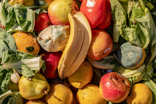 Rotting and moldy fruit and vegetables in a heap.