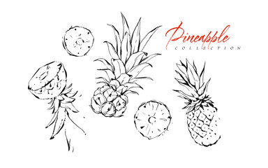 Hand drawn vector abstract exotic graphic ink textured tropical fruits pineapple illustrations collection set sketch drawing isolated on white background.Healthy lifestyle concept
