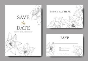 Vector Narcissus. Wedding background card engraved ink art. Thank you, rsvp, invitation elegant card graphic set .