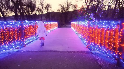 Wall Mural - Wooden bridge decorated with red and blue Christmas lights.