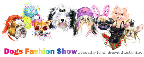 dog with fashion accessories. Trendy dogs breed set. Pets shop background. cute domestic animal watercolor illustration.