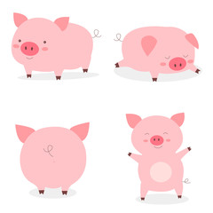 Set fat little cute pigs.The year of the pig. Funny pigs vector cartoon illustration.