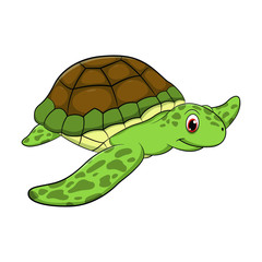 Turtle cartoon drawing illustration