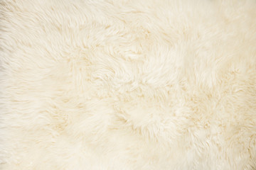 Whole background covered close up view of white sheepskin fur. Copy space. Wall mural