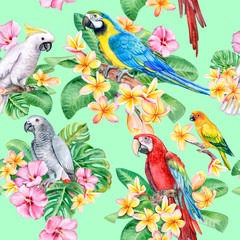 Ingelijste posters Papegaai Set of parrots, macaw with tropical plants. Seamless patterns, wallpaper with exotic birds. Watercolor. Illustration. Template. Handmade. Close-up. Clip art.