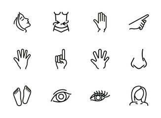 Human body line icon set. Face, hand, eye. Health concept. Can be used for topics like healthcare, weight, gesturing