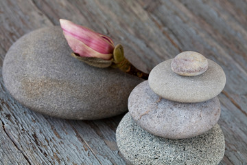 Acrylic Prints Daisies zen style still life balanced stone cairn with magnolia flower
