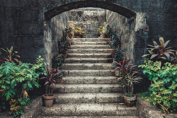 Vintage stone stairs surrounded by potted flowers. Fairy-tale scenery the moss covered ancient entrance with plants on the sides. Stylish Asian interior. Ideal background for collages.