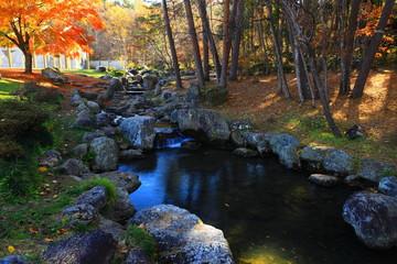 秋の宮澤賢治童話村