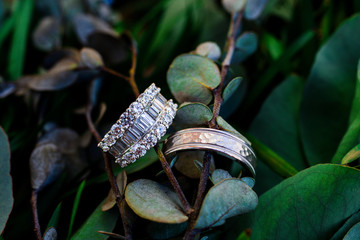 Wedding rings on greenery