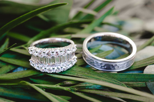 Wedding bands against greenery