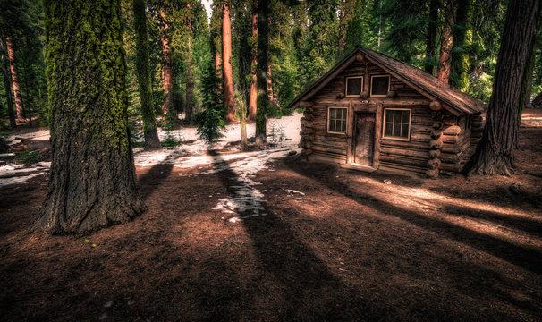 Cabin in the Woods, Maripose Grove, Yosemite National Park, California
