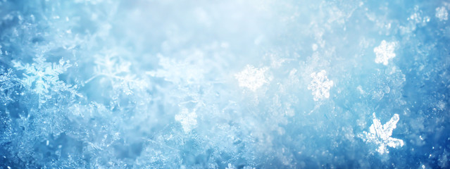 Snow in winter close-up. Macro image of snowflakes, winter holiday background.