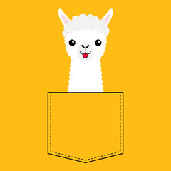 Llama alpaca face head in the pocket. Cute cartoon animals. Kawaii character. Dash line. White and black color. T-shirt design. Baby yellow background. Isolated. Flat design.