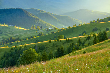 Mountain summer landscape with wooded green hills. Beautiful sunny scenery in clear weather.