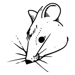 Mouse hand drawn. Vector illustration of cartoon mouse. Funny rat.