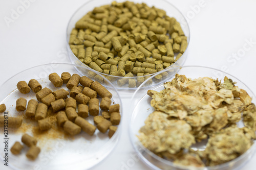 Materials for Beer fermentation, Beer raw materials and