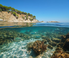 Spain Costa Brava coastline with fish underwater, split view half above and below water surface, Cala Bona, Mediterranean sea, Palamos