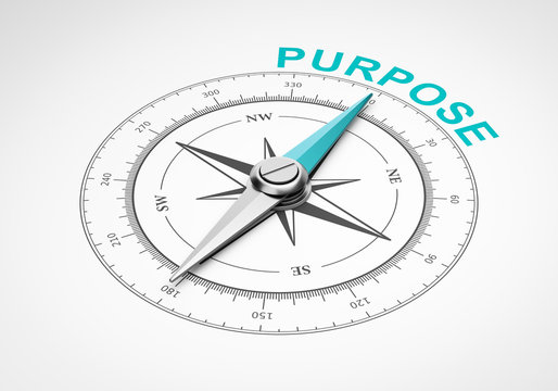 Compass on White Background, Purpose Concept