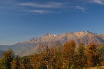 Nature and mountain landscapes of Sochi and Rosa Khutor mountain resort, autumn colors