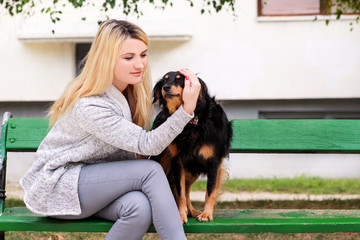 Beautiful woman with his small mixed breed dog sitting and posing in front of camera on wooden bench at city park. Portrait of owner and cute half breed dog enjoys, resting, petting together outdoors.