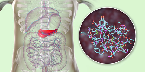 Pancreas producing insulin hormone, conceptual image, 3D illustration