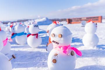北海道の冬 札幌 羊が丘展望台からの雪景色