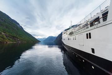 passenger ship in the fjord