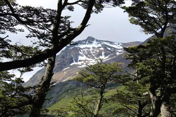 Landscape  Patagonian  Argentine