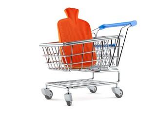 Hot water bottle inside shopping cart