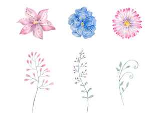 Blue flower watercolor drawing illustration geometric illustration painting watercolour floral aquarelle pink spring summer floral garden clip art for greeting birthday weeding on white background