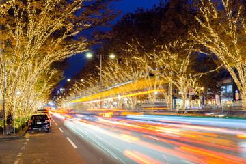 Fotobehang Aziatische Plekken Winter Night Illumination in Omotesando, Tokyo