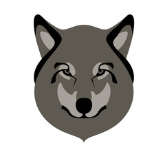 wolf face front view, flat style
