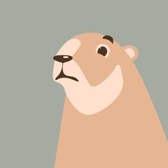 cartoon marmot ,vector illustration ,flat style,