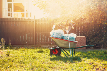 garden wheelbarrow with garbage bags and rakes standing on the grass near the fence in the warm glow