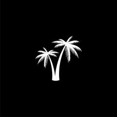 Silhouette palm tree, Palm tree icon or logo on dark background