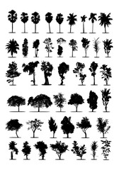 set of tree silhouettes on white background ,nature,vector illustration