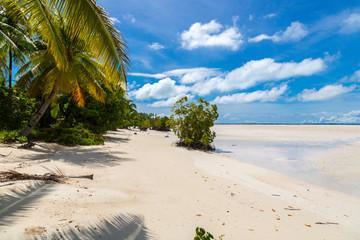 Sandy paradise beach of azure turquoise blue shallow lagoon, North Tarawa atoll, Kiribati, Gilbert Islands, Micronesia, Oceania. Palm trees, mangroves
