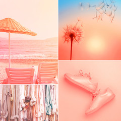 Collage made of four photos in living coral color. Trendy color of the 2019.
