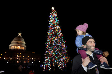 The Capitol Christmas Tree is lit on Capitol Hill