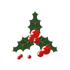 christmas holly berry decoration white background