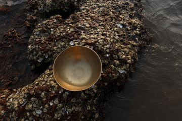 Tibetan singing bowl on the ocean on the coral of the sea. Photo above. Place for inscription. Photo for advertising.