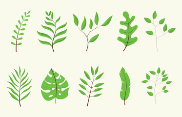 leaf or leaves green tree set collection with white color vector