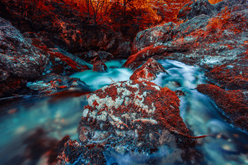 colorful waterfall in autumn forest