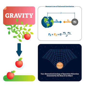 Gravity vector illustration. Explained natural force to objects with mass.