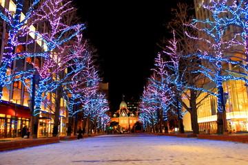Foto auf Leinwand Braun 北海道、札幌市 、北3条広場akapuraのホワイトイルミネーションの風景、