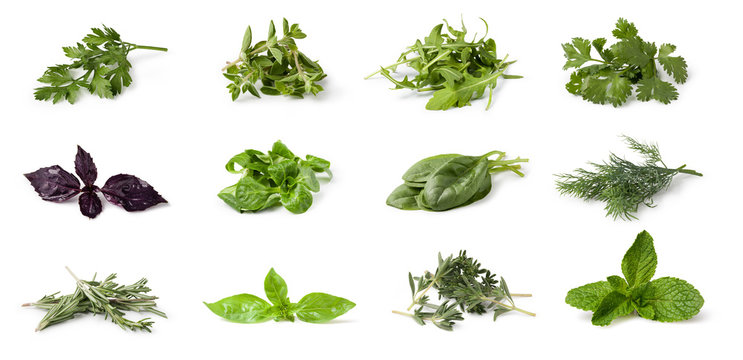 Fresh spices and herbs