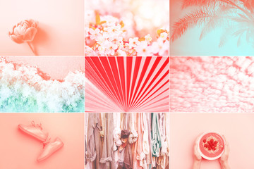 Collage made of nine photos in trendy living coral color. Trendy color of the 2019: Living Coral...
