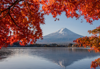 Deurstickers Natuur Mount Fuji, Autumn in Mt. Fuji, Japan - Lake Kawaguchiko , Colorful Autumn Season and Mountain Fuji with morning sunrise and red leaves at lake Kawaguchiko, Japan.